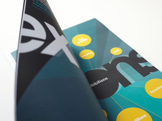 Diversified Exfactor Marketing Publication Inset 2